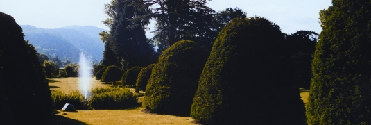 Gwydir Castle: a view of the grounds